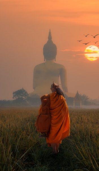 Big Buddha at Wat Muang Angthong Thailand