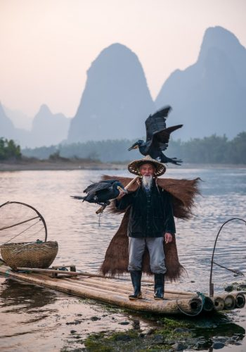 Guilin fisherman Fisherman of Guilin Li River and Karst mountains during the blue hour of dawn Guangxi China
