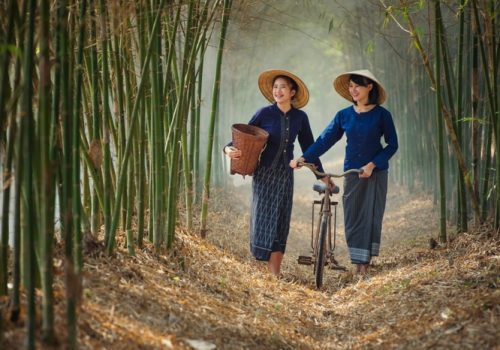 Laos country Women farmer bamboo forest