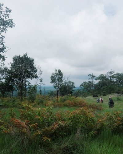 Virachey National Park Cambodia